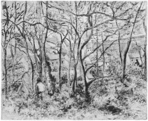 Paysage sous bois à Pontoise