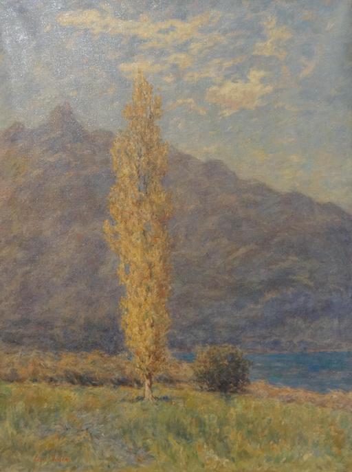 Peuplier près des lacs du Bourget