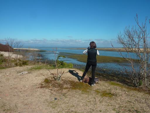 Photographe de paysage marin