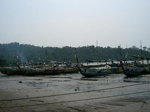 Pirogues de pêcheurs au Cameroun