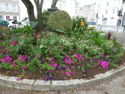 Place des cordeliers à La Rochelle