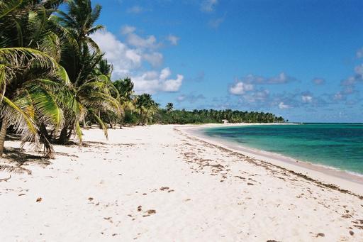 Plage tropicale à la Guadeloupe