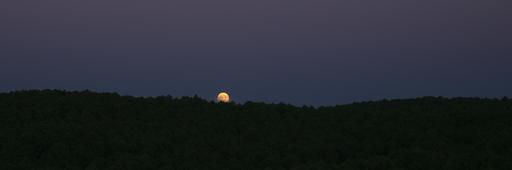 Pleine lune sur la forêt de La Teste