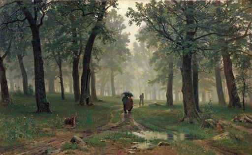 Pluie dans une forêt de chênes