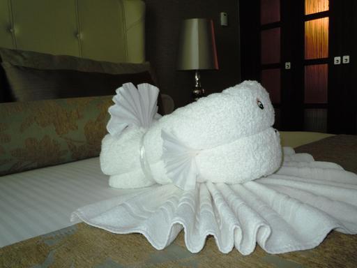 Poisson en serviettes de bain