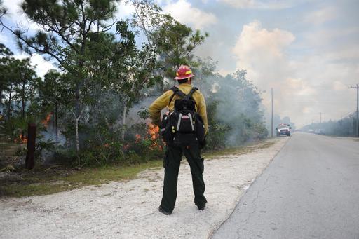 Pompier forestier
