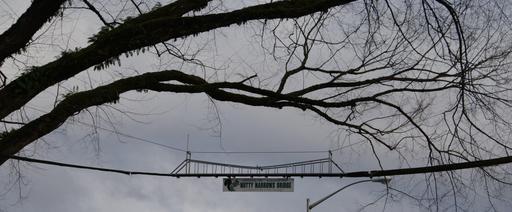 Pont aérien pour écureuils