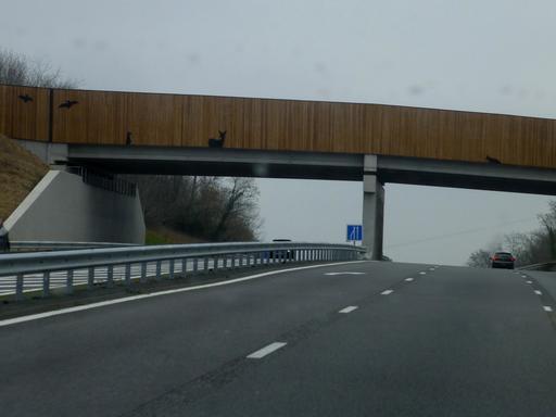 Pont faunique au-dessus de l'autoroute