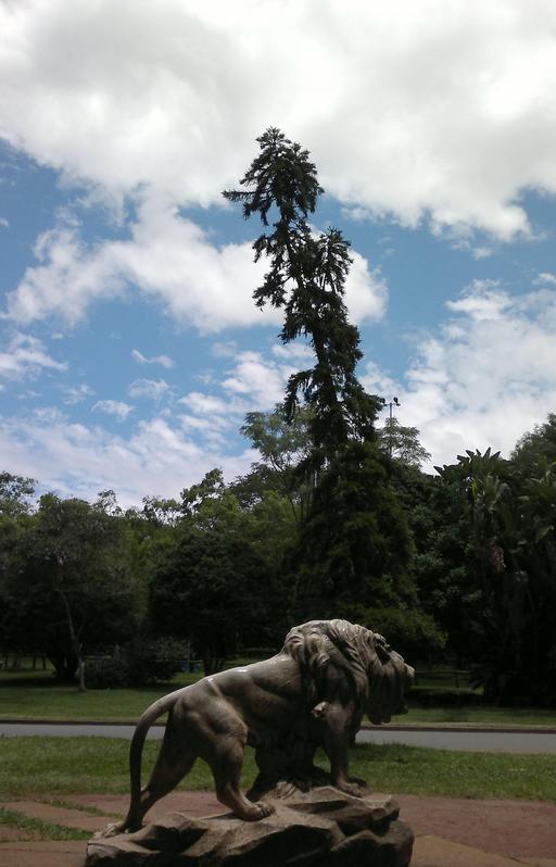 Praça do Leão au Brésil