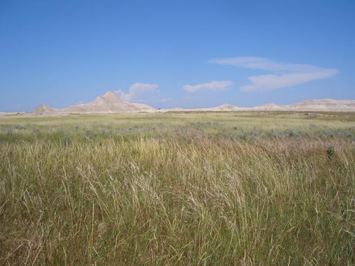 Prairie du Nébraska