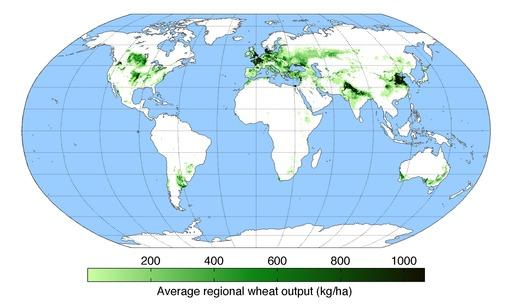 Production mondiale de blé en 2000
