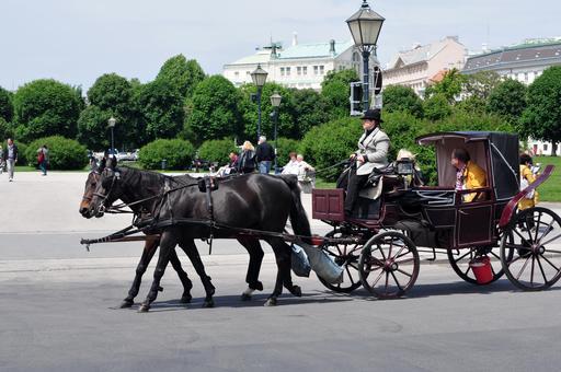 Promenade en calèche dans les rues de Vienne