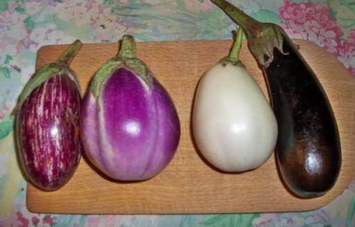 Quatre variétés d'aubergines