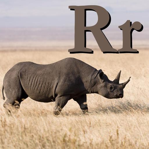 R pour le Rhinocéros