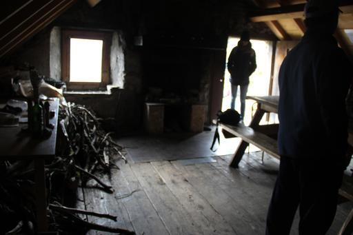Ramassage de bois mort pour le gîte