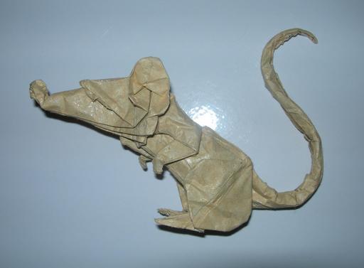 Rat en Origami