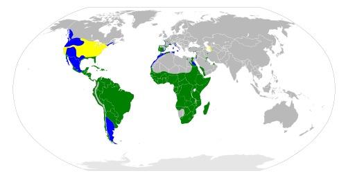 Répartition mondiale du héron garde-beufs