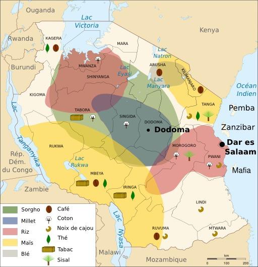 Ressources agricoles de la Tanzanie