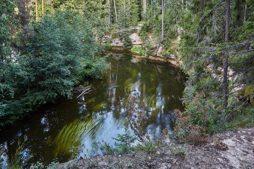 Rivière Ahja en Estonie en été