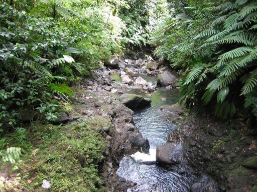 Rivière Carbet en Guadeloupe