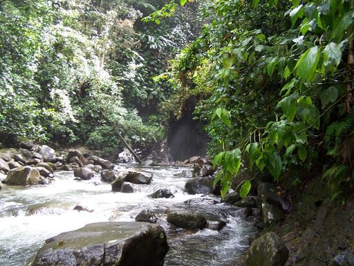 Rivière des Pères en Guadeloupe