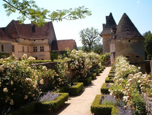 Roseraie du château de Losse en Périgord
