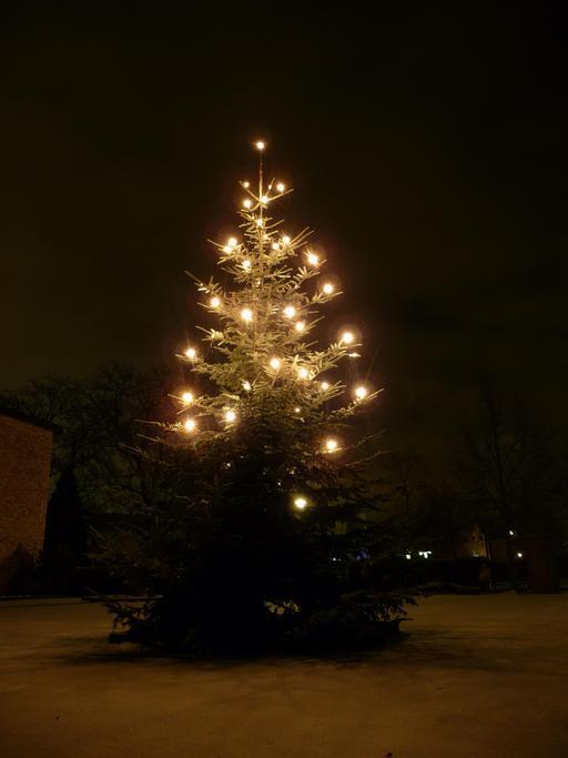 Sapin de Noël de nuit