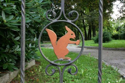L'écureuil à la grille