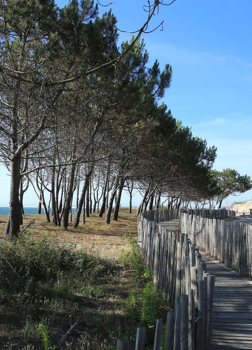 Sentier pédestre littoral