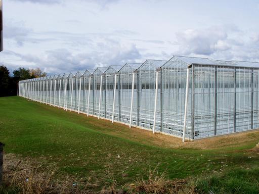 Serres agricoles en construction près de Nérac
