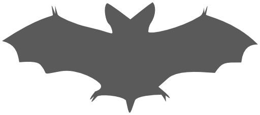 Silhouette de chauve-souris en vol