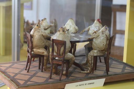 Six grenouilles jouent aux dominos