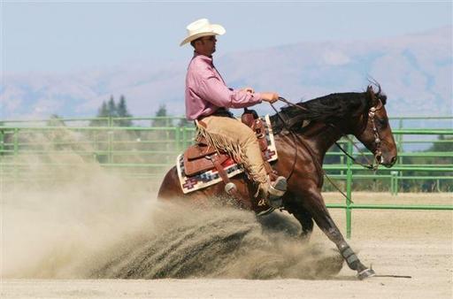 Sliding stop d'un cheval