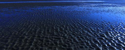 Traces dans le sable à marée basse