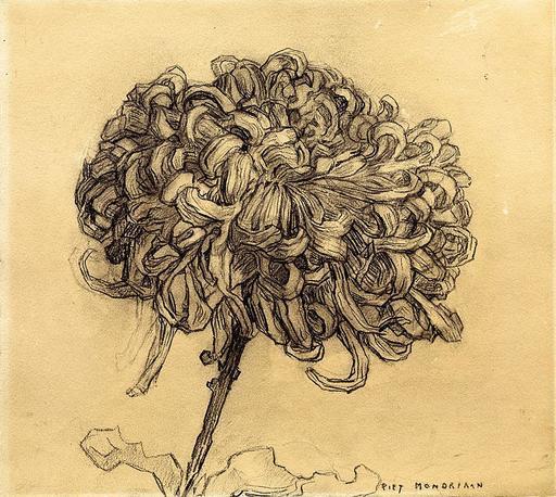 Un chrysanthème de Mondrian