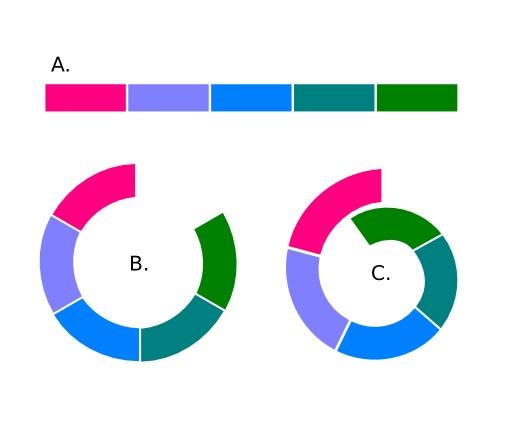 Variations de populations clinales en boucle