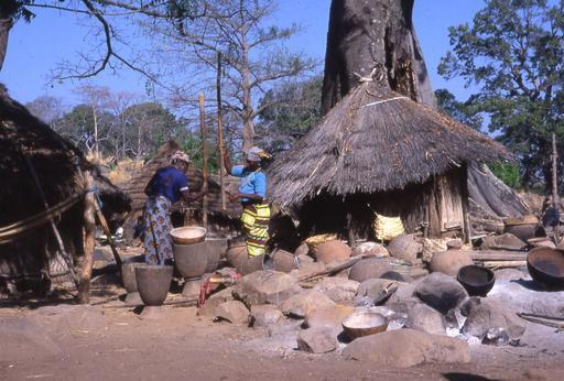 Vie quotidienne dans un village Bédik sénégalais