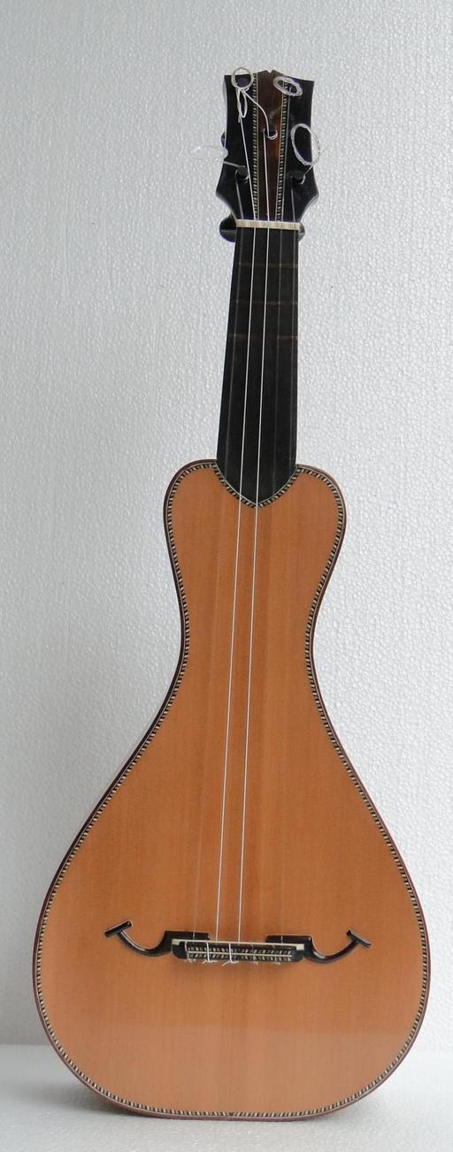 Viola de cocho brésilienne