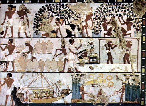 Viticulture et vinification dans l'antiquité
