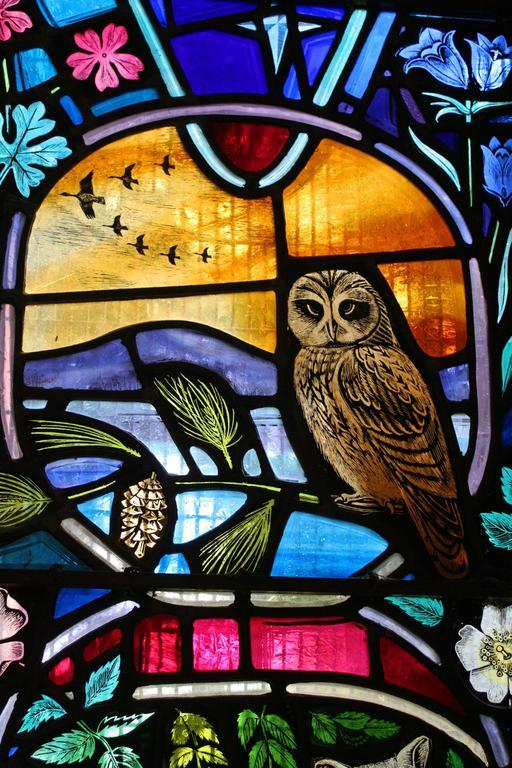 Vitrail aux oiseaux sauvages en Écosse