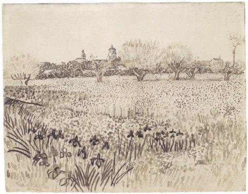 Vue d'Arles avec iris au premier plan au mois de mai