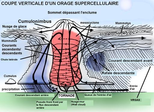 Vue en coupe d'une supercellule orageuse